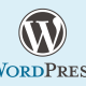 Top-wordpress-agency