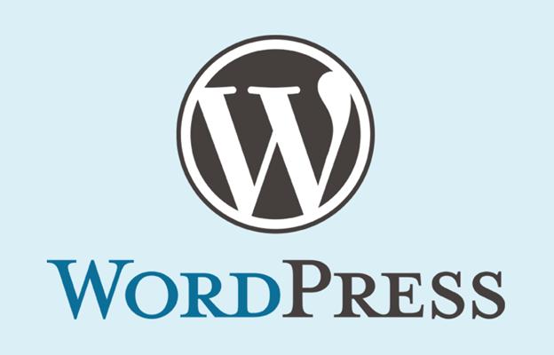 Top-wordpress-agency