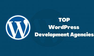 TOP WordPress Development Agencies