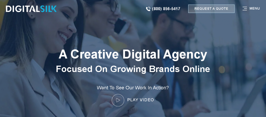 Digital Silk - WordPress development agencies